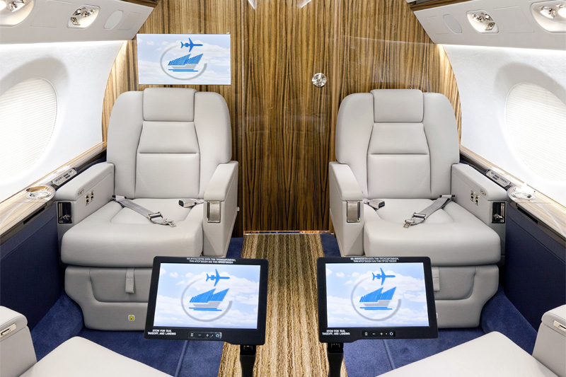 G550 – Personal Entertainment Display